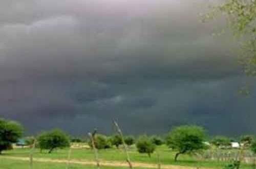 أمطار خفيفة على مناطق متفرقة من اترارزة (مقاييس شبكة الرصد)