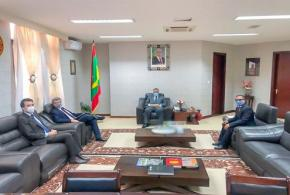 بعثة الاتحاد الأوربي تهنئ موريتانيا على نجاح قمة الساحل