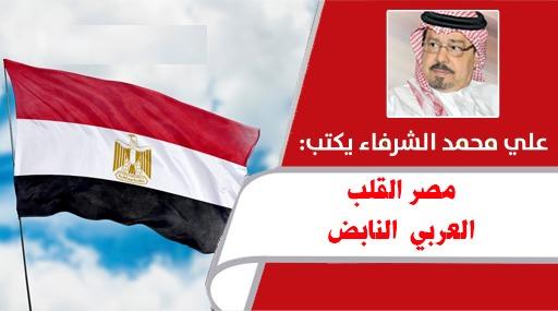 مصر القلب العربي النابض .. بقلم المفكر العربي علي محمد الشرفاء