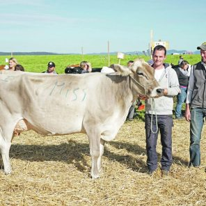 Miss Wädenswil Brown Swiss: Rialto