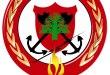 الدفاع المدني: إخماد حريق أعشاب وهشيم وأشجار في مرج بسري