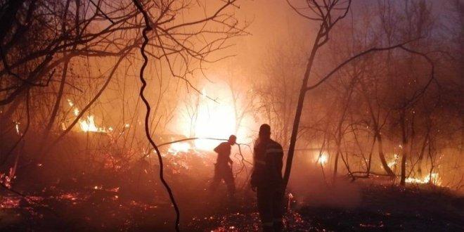 جهود عناصر الدفاع المدني تنجح في اخماد حريق أحراج الكنيسة