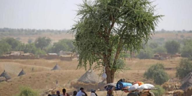 مجلس الأمن يبحث عبر الفيديو في النزاع حول منطقة تيغراي الأثيوبية