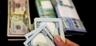 ترزيان: سلام على العملة الوطنية إذا بدأ التعامل بأسعار الدولار الرائجة في معاملات التخمين