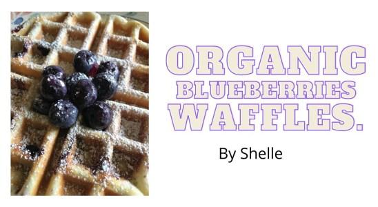 ORGANIC BLUEBERRIES WAFFLES.