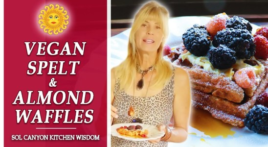 Spelt and Almond Waffles   The Best Vegan Waffles Recipe   Sol Canyon Kitchen Wisdom