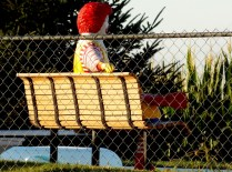 Ronald McDonald in someone's backyard! Muscatine, IA. Copyright Robert Hartwig.
