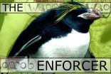 It takes a lot to make a Macaroni Penguin look tough...;)