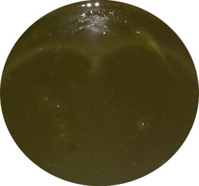 cooked mixture with green tea