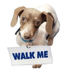 Dog Walking, dog holding sign asking, Walk Me