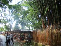 Budha Subba bamboos