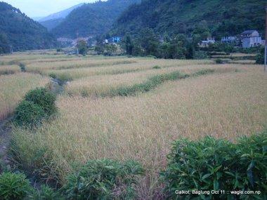 a nepali village of baglung galkot (12)