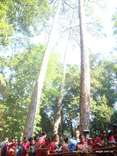 baglung kalika temple dashain festival (24)