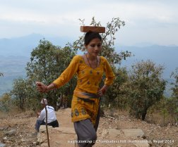 A woman carried a brick to build a temple at the top of Champadevi hill.