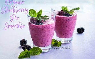 Delicious Organic Blackberry Pie Smoothie