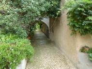 José Maria da Fonseca path to Gardens