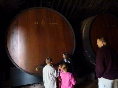 José Maria da Fonseca Periquita Cellar - That's a Big Barrel