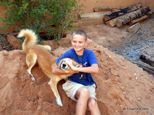 Playing with our temporary dog Tubo while housesitting on an oasis in southern Morocco