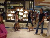 Rome Dogs Out and About (5)