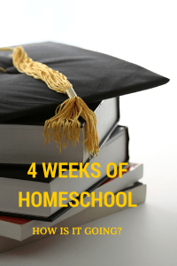 4 weeks of Homeschool - How is it going