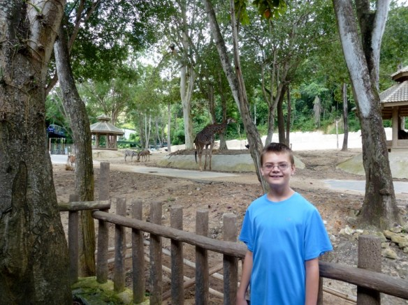 Chiang Mai Zoo and Aquarium Africa