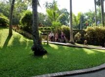 A nice park
