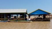 Floating villages Siem Reap (7)