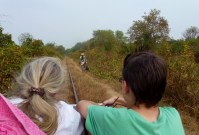 Bamboo Train Battambang Cambodia (15)