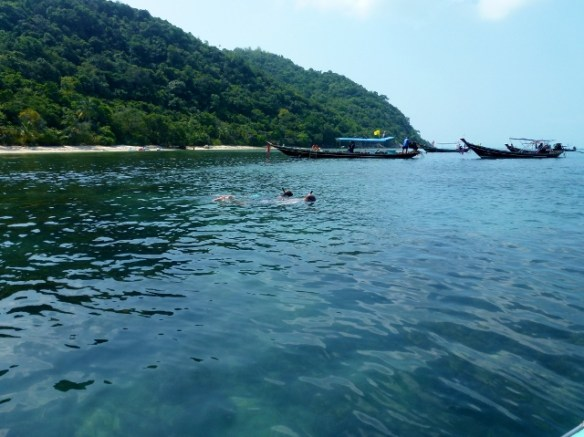 Snorkel with Island Gem Picnic Snorkeling