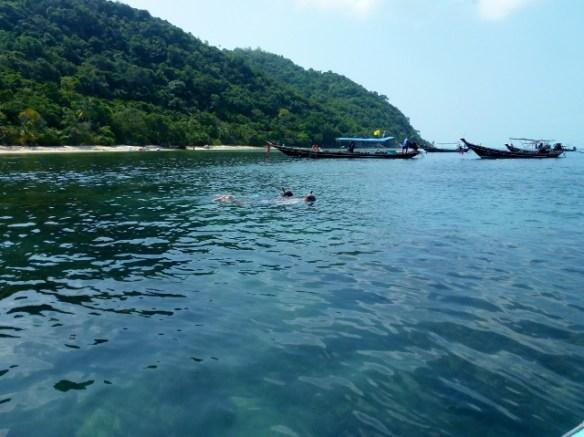 Snorkel with Island Gem Picnic Snorkeling