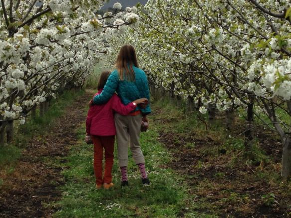 Frankie and Jackie at Sorell Fruit Farm in Tasmania