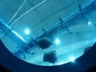 SEA-Aquarium-Experience-38