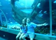 SEA-Aquariuam-Experience-50
