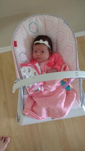 Ellie 6 weeks old