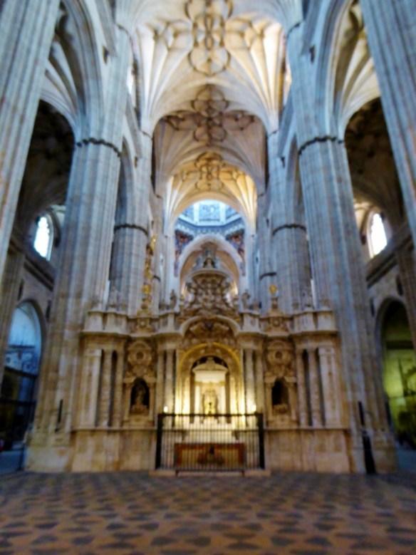 Cathedral Salamanca City Discovery 48 hour Salamanca Card