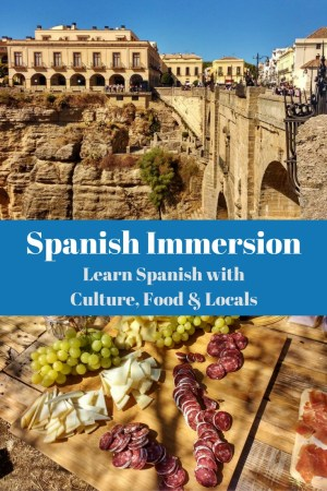 Spanish Immersion is the perfect way to either jump start learning Spanish or give you the kick in the pants like me, so we are off to Ronda Spain. Click to read more on WagonersAbroad.com