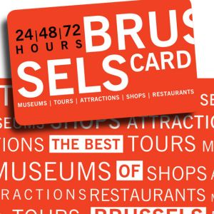 We of course think it is the best deal to get the Brussels Card!  This provides you free entrance to over 30 museums and discounts for many of the main attractions.