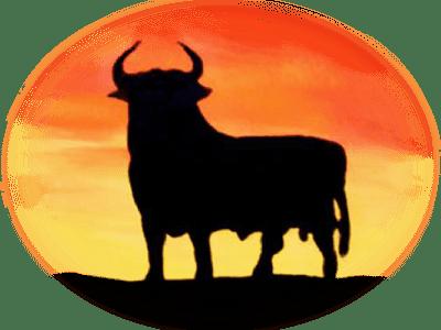 Bull-Sunrise