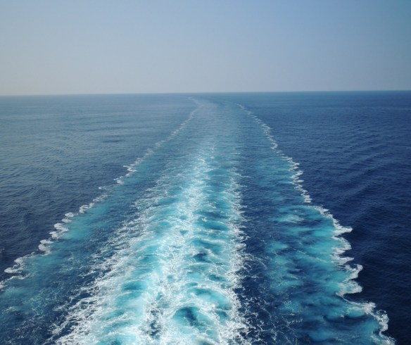 cruise water