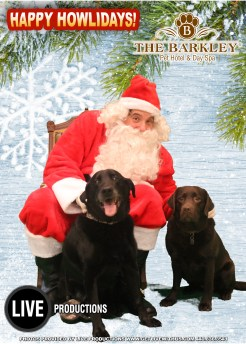 Santa Paws 2014 at the Barkley Pet Hotel with LIVE Productions. A portion of the proceeds to benefit W.A.G.S. 4 Kids