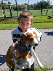 happy tails 10