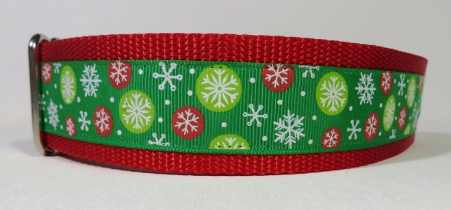 red and lime 1 point 5 collar