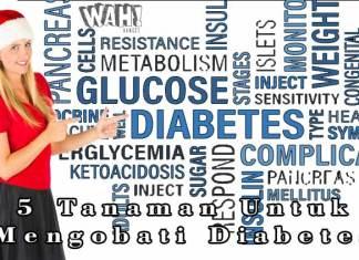 5 Tanaman Untuk Mengobati Penyakit Diabetes