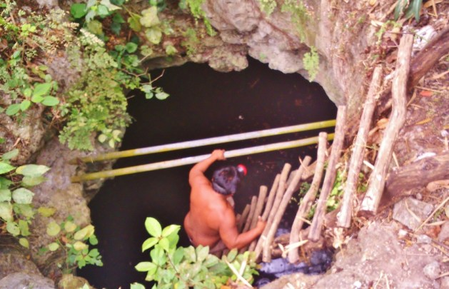 entry to the underworld: a mayan cenote