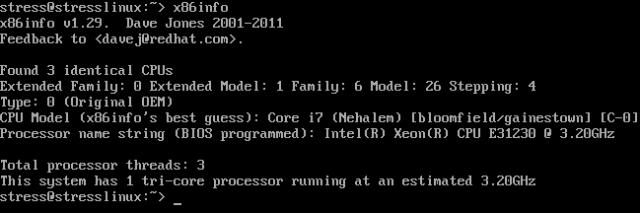 stresslinux-x86info