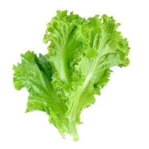 Simpan Sayuran di Kulkas - Sayuran Hijau