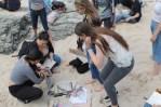 Practical Workshop on St Ives Beach