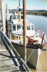 ANITA BAY Milford Sound march 92-3