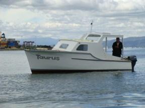 Taurus a
