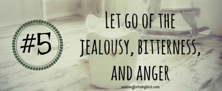 5-let-go-of-the-jealousy-bitterness-and-anger